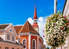 Kyrka för St Elizabeths i Parnu, Estland Arkivbilder