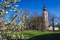 Kyrka i Orth en der Donau arkivfoton