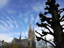 Kyrka i Wien Royaltyfri Fotografi