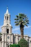 Kyrka och en palmträd Royaltyfri Fotografi