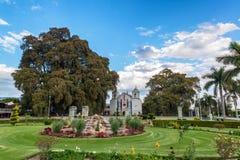 Kyrka och träd i Tule, Mexico royaltyfria bilder
