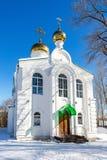 Kyrkan av Boris och Gleb i vinter parkerar i Samara royaltyfri foto