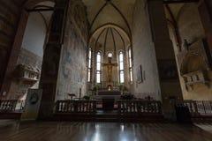 Kyrkan av Eremitanien är en Augustinian kyrka av det 13th århundradet Padua Royaltyfri Foto