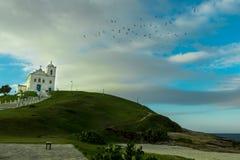 Kyrkan och fåglarna Royaltyfri Fotografi