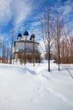 kyrklig lantlig ryssvinter royaltyfri foto