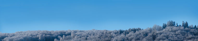 kyrklig panoramavinter Royaltyfria Foton
