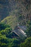 kyrklig skog Arkivbild