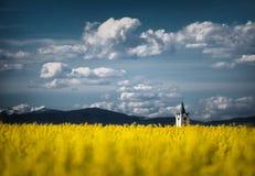 Kyrklig tornspira i ett våldtafält royaltyfria foton