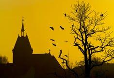 Kyrkliga fågeltreesilhouettes Arkivbild