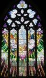 Kyrkliga fönsterSts David domkyrka Hobart, Tasmanien Royaltyfri Fotografi