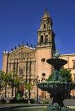 kyrkliga luis potosi san Royaltyfri Fotografi