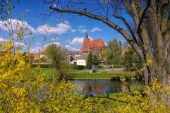 Kyrkliga Marienkirche von Beeskow i Brandenburg Royaltyfria Bilder