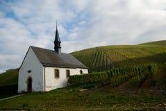 kyrkliga vingårdar arkivfoto