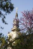 Kyrkligt torn med guld- kors sedda igenom trädfilialer Arkivfoton