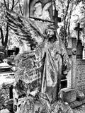 Kyrkogårdängel Konstnärlig blick i svartvitt Arkivbilder