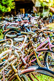 Kyrkogård av gamla Rusty Bicycles Fotografering för Bildbyråer