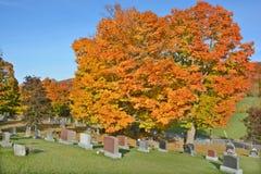 Kyrkogård för helig Treenighet Arkivbilder