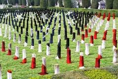 Kyrkogård för krig för världskrig I - hjältar som är stupade för hemland - veteranminnesdagen royaltyfria foton