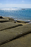 Kyrkogård för strand för Susan Hoi skal fossil- royaltyfri foto