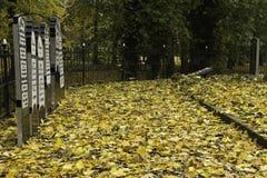 Kyrkogård i nedgång Royaltyfri Foto
