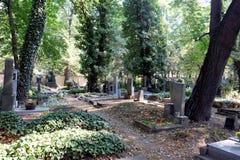 Kyrkogård i Prague Royaltyfri Bild