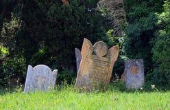 Kyrkogård i söderna av Frankrike Royaltyfri Bild