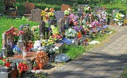 Kyrkogård i staden Ruzomberok, Slovakien Arkivfoton