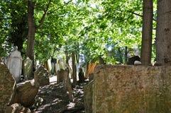 kyrkogård judiska gammala prague Royaltyfri Bild