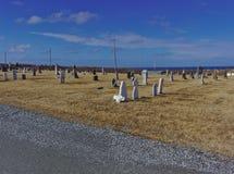Kyrkogård som visar blå himmel royaltyfria bilder