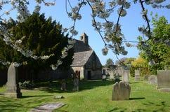 Kyrkogårdblomningar Arkivfoton