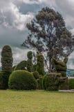 Kyrkogården av Tulcan som är bekant för Elaborately klippt cypress Arkivbild