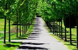 Kyrkogårdgångbana Arkivbild
