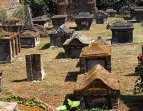 kyrkogårdholländare Arkivbilder
