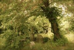 kyrkogårdjkztemet Arkivbild