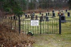Kyrkogårdjordning med det utsmyckade järnstaketet Green Grass royaltyfri fotografi