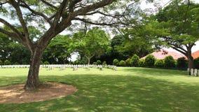 kyrkogårdmilitär Arkivfoto