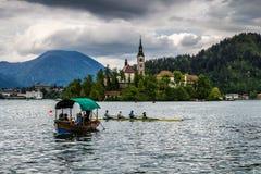 Kyrktaga i mitt av Bled sjön, Slovenien Arkivbilder