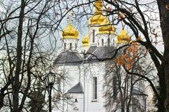 Kyrktaga i treesna Kyrka Gammal kyrka i Chernigov guld- kupoler historia Höst Vinter Vår royaltyfri foto