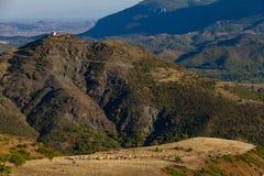 Kyrktaga och herdar som betar får på platån, Thessalia, Grekland royaltyfri fotografi