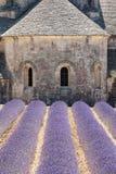 Kyrktaga på Abbaye de Senanque, Provence, Frankrike Arkivbild
