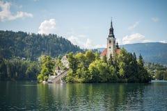 Kyrktaga på en ö, i blött, Slovenien Arkivbild
