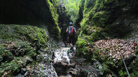 Kysel gorge in Slovensky raj National park , Slovakia Royalty Free Stock Photography