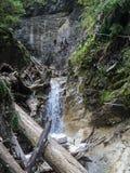 Kysel gorge in Slovensky raj National park , Slovakia Royalty Free Stock Photography