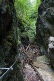 Kysel ravine in Slovak Paradise National park, Slovakia Stock Photo