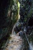 Kysel ravine in Slovak Paradise National park, Slovakia Stock Images