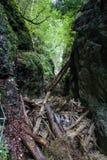 Kysel ravine in Slovak Paradise National park, Slovakia Stock Photos