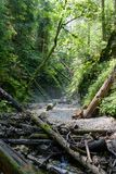 Kysel-Schlucht im Nationalpark des slowakischen Paradieses, Slowakei Lizenzfreie Stockfotografie