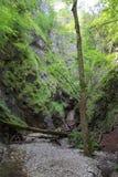 Kysel-Schlucht im Nationalpark des slowakischen Paradieses, Slowakei Stockfotos