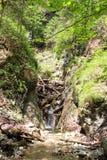 Kysel-Schlucht im Nationalpark des slowakischen Paradieses, Slowakei Stockfoto