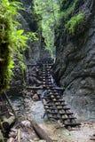 Kysel-Schlucht im Nationalpark des slowakischen Paradieses, Slowakei Lizenzfreies Stockfoto